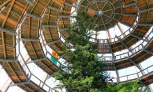 Úchvatná aktivní dovolená v Bavorském lese