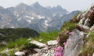 Národní park Triglav – návštěva horského hřebene