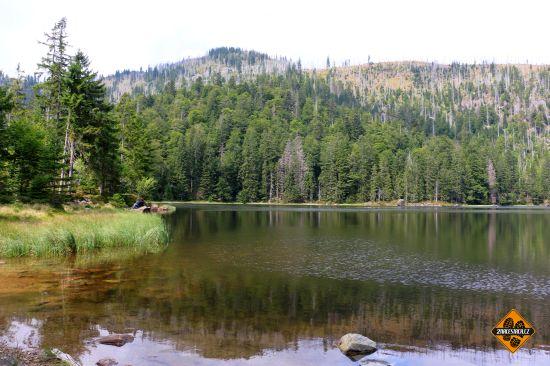 jezero grosser rachel, grosser rachel see