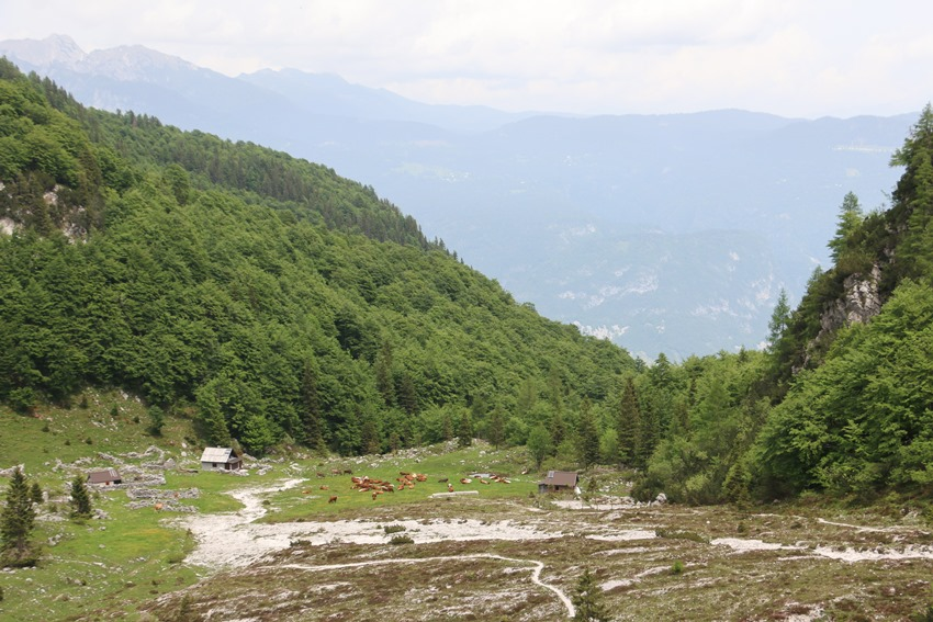 horská osada Suha
