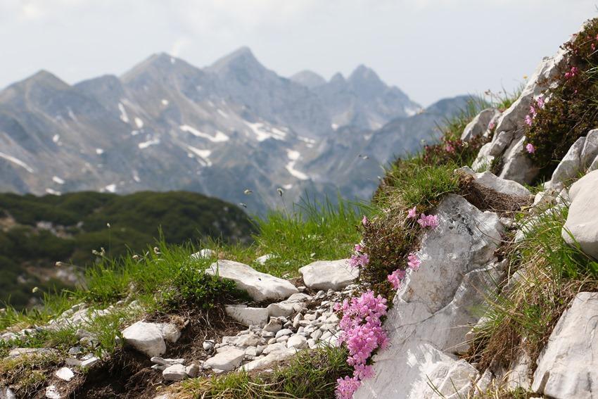 pohled směr Vogel, Slovinsko