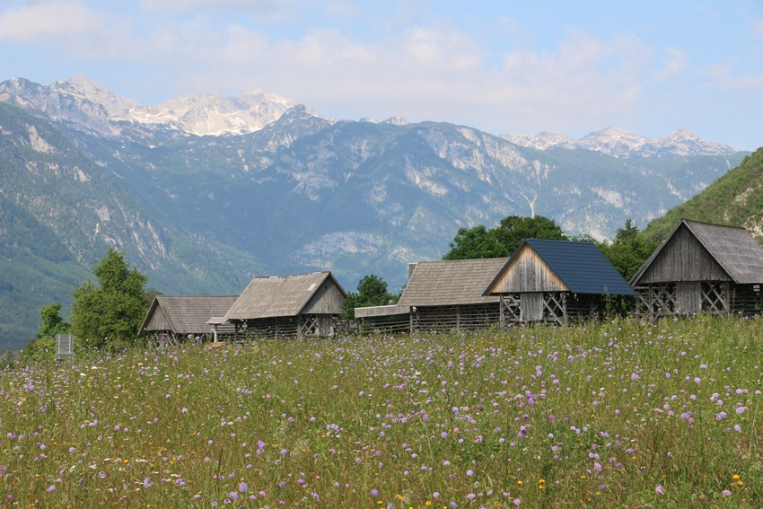 Národní park Triglav, Srednja vas v Bohinju, Slovinsko