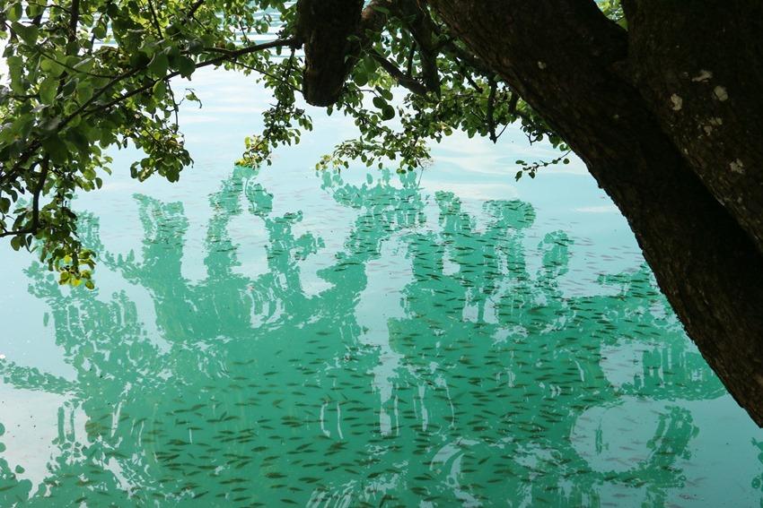 azurová voda jezera Bled, Slovinsko