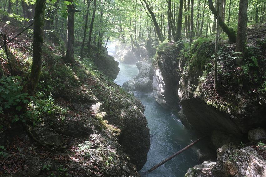 srednja vas v bohinju, Slovinsko